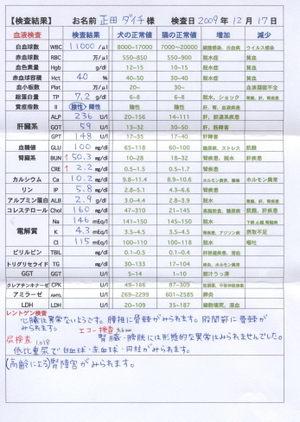 Daichi091218